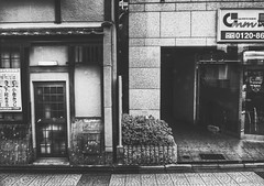Kyoto, Japan |  (Jon-F, themachine) Tags: trip travel vacation japan digital asian asia sony   trips nippon japo traveling oriental orient kansai fareast  kyoko nihon  digitalphotography  japn honshu  2015     landoftherisingsun    xapn jonfu  snapseed dscwx70