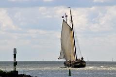 'Rea-Klif' Hoorn (FaceMePLS) Tags: hoorn zeilen boot boat nederland thenetherlands streetphotography sail clipper ijsselmeer sailingship zeilschip schip straatfotografie tweemaster facemepls nikond300 tweemastklipper