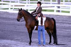 IMG_7956 (SJH Foto) Tags: show horse sports girl flat class teen teenager rider equestrian