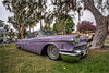 1958 cadillac coupe de ville (pixel fixel) Tags: 1958 cadillac coupedeville mercifuls pinstriping purple signalhill signalhillpark sultans