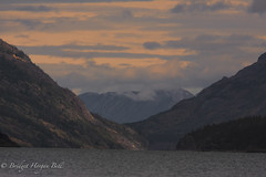 Yukon River © Bridget Horgan Bell