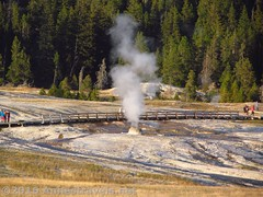 Beehive Geyser after the eruption (Annes Travels) Tags: yellowstone wyoming uppergeyserbasin geysers geothermal