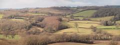 Winter Landscape 1 (Nick_Fisher) Tags: landscape somerset compton dando keynsham nickfisher winter tree plough field e620