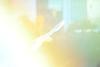 tokyo seagull UENO01 (sunuq) Tags: eos 5dsr ef70300mmf4556doisusm ef70300mm japan 東京 上野公園 不忍池 カモメ 鴎 seagull