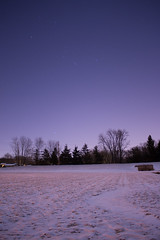 Sirius and Orion over moonlit snow cover field. (xiao_fan19454) Tags: sirius orion snow