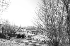"at the edge of the forest (Bois de Breuil) a traditional Norman farmhouse sits in frost, black & white, Calvados, Normandy, France (grumpybaldprof) Tags: tamron 16300 16300mm ""tamron16300mmf3563diiivcpzdb016"" ""boisdubreuil"" ""forestofbreuil"" honfleur vasouy penndepie conservation ""conservatoiredulittoral"" rhododendrons ""coastalconservancy"" bois forest trees deciduous coniferous wood woods coastline ""dukesofnormandy"" french kings ""philippeauguste"" breuil wildlife wildboar ""pinemarten"" ""redfox"" deer ""forestwalk"" landscape branches leaves noiretblanc farmhouse slate stone oak halftimbered haze snow frost blackandwhite monochrome blackwhite bw hdr bwhdr fineart detail delicate"