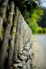 Wooden Fence (*Capture the Moment*) Tags: 2016 autumn bokeh bokehleicalenses dof deutschland fence fränkischeschweiz germany herbst holz leicasummiluxm leitzsummiluxm1450 leitzleica sonya7m2 sonya7mii sonya7ii wood zaun bokehlicious fencedfriday fenced friday happyfencedfriday hff