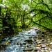 South Brazil - In Explore 06-23-2015