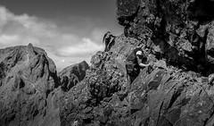 Collies Ledge (Scotland's Mountains) Tags: island scotland ridge cuillin gabro