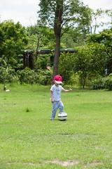 BM7Q4061.jpg (Idiot frog) Tags: trees boy cute adam green grass leaves yard canon ball eos restaurant kid child soccer taiwan     playball               1dx newtaipei