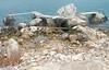 Twin Jetty (Lydie's) Tags: water rocks jetty steps croatia babinkuk