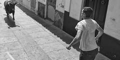 Gente de los Pueblos, de scar Crdenas (Casa de Amrica) Tags: madrid bw espaa blancoynegro foto wb bn retratos cdiz pueblos fotografa amricalatina latinoamrica casadeamrica casadeamerica casaamerica casaamrica fotografadocumental iberoamrica casamerica arteenlared casamrica scarcrdenas