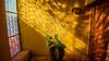 2016 - Mexico - Querétaro - Prism (Ted's photos - For Me & You) Tags: 2016 cropped mexico queretaro santiagodequeretaro tedmcgrath tedsphotos tedsphotosmexico vignetting prism pattern nikon nikonfx nikond750 windows lacasadelamarquesa lacasadelamarquesaqueretaro casadelamarquesa casadelamarquesaqueretaro