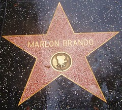 "Hollywood Walk of Fame - Marlon Brando / Godfather ' ""you shoulda come sooner"" (ramalama_22) Tags: la los angeles hollywood wlk fame star marlon brando movie actor godfather last tango paris"