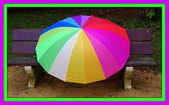 JOUR DE PLUIE(2) EXPLORE (Marie-Laure Larère) Tags: parapluie banc bordure explore