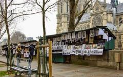 les bouquinistes de Paris ... (miriam ulivi) Tags: miriamulivi nikond7200 france paris lesbouquinistesdeparis people cattedraledinotredame alberi trees inverno winter