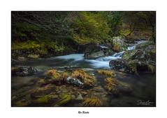 Río Belelle... (Canconio59) Tags: river río belelle neda coruña galicia españa spain verde green sedas vegetación vegetation bosque forest