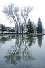 La Bégude de Mazenc (Drôme) : parc Emile Loubet (bernarddelefosse) Tags: labégudedemazenc parc drôme rhônealpes arbres eau reflet