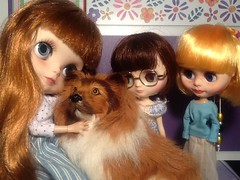 Blythe-a-Day January#25: Backward: The Girls and a Collie