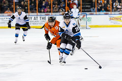 "Missouri Mavericks vs. Wichita Thunder, February 3, 2017, Silverstein Eye Centers Arena, Independence, Missouri.  Photo: John Howe / Howe Creative Photography • <a style=""font-size:0.8em;"" href=""http://www.flickr.com/photos/134016632@N02/32591262421/"" target=""_blank"">View on Flickr</a>"