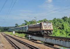 16303 Vanchinad express (Gautham Karthik) Tags: india indianrailways train trainspotting vanchinadexpress kochuveli bridge electriclocomotive wap4