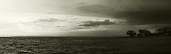(.¸.·•●✿ ℓυ∂υєη ✿●•·.¸.) Tags: riodelaplata rio river buenosaires argentina byn virado blackwhite sepia nubes clouds cielo ski