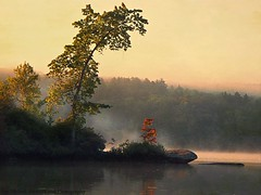 Parker Morning (joyolsonnichols) Tags: trees mist nature water outdoors pond august artisticphotography parkerpond