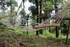 Hammocks at Dare Nature Wayanad