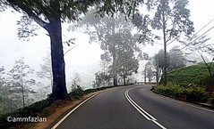 A Highland Road (ammfazlan) Tags: road travel trees white mist black cold tree travelling green mobile misty evening samsung roadtrip sl sri lanka highland journey srilanka far hdr mothernature colder goodevening eveningshot fazlan nuwareliya tarmacroad ammfazlan fazlaan
