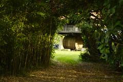 Un tunel hacia Asturias (Kilmar2010) Tags: villaviciosa horreo tonel aasturias principadodeasturias