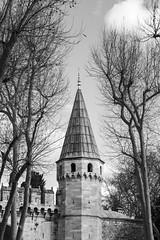 IMG_8896 (storvandre) Tags: travel history turkey site mediterranean istanbul turismo viaggio turkish sultanahmet turchia santasofia storvandre