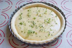 Making Smoked Plumcots Pie (lyudavitaya) Tags: cheese pie plum tart smoked becon