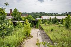 Elementary School (AP Imagery) Tags: county school usa abandoned rural decay kentucky ky forgotten muhlenberg elementary urbanexploring urbex