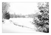 Bucolic Snowscape (Astroredg) Tags: bw nb blackandwhite noiretblanc winter hiver snowscape hivernal rural bucolic landscape paysage snow snowy neige enneigé lake frozen lac gelé pond étang snowing highkey chalet domain domaine dreamy rêveur enchanted enchanté lonesome seul isolated isolé minimalist minimalistic minimaliste stfelixdekingsey quebec canada