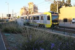 LA Metro Expo Line (So Cal Metro) Tags: streetcar tram trolley metro transit lrt lrv lightrail expo expoline la losangeles lametro lacmta santamonica kinkisharyo