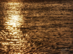 Tranquillity may be worth more than gold. (uz360) Tags: uzairqadriphotographyuz360arts beach do darya sea view samsung k zoom gold reflection beautiful samandar waves tranquility peace serene morning sunrise sunset golden shine glitter twinkle karachi pakistan cellphone