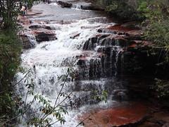 Salto Kawi Merú (Wguayana) Tags: venezuela bolívar gran sabana salto kawi cascada waterfall water agua nature