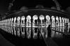 Selfie (Kari Siren) Tags: mosque selfie abu dhabi blackandwhite