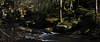 Parlor Rock Trail (vbd) Tags: pentax k3 vbd smcpentaxda55300mmf458ed ct connecticut park newengland waterfall pequonnockriver river creek trumbull handheld manualfocus 2017 winter2017 landscape vista parlorrockpark
