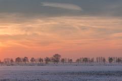 Achterhoek sunset. (janneke.roelofs) Tags: 70200 achterhoek buiten ijs koud sneeuw vorst water wit zon