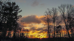 Morning After The Storm_5066 (smack53) Tags: smack53 sunrise earlymorning morning morningsky paintedsky clouds sky cloudysky trees silhouettes westmilford newjersey winter wintertime scenic outdoors outside canon powershot sx150is canonpowershotsx150is
