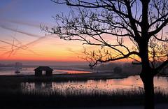 Maldon Prom - first light (Jak5Bale) Tags: maldon sunrise dawn silhouettes promenade