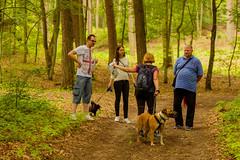 Fotograf_Kwidzyn20150614_11-40-36_spacer_z_psem_na_orientacje_fot_Pawel_Wolochowicz_MG_5142