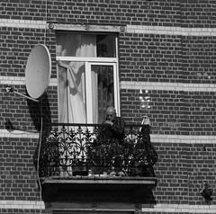 Le repenti - The repentant (p.franche On - Off) Tags: old brussels blackandwhite man blanco architecture europe belgium belgique noiretblanc balcony negro bruxelles panasonic dxo brussel zwart wit balcon hdr homme 白黒 belgïe schwarzweis mustavalkoinen inbiancoenero agé svartochvitt أبيضوأسود bestofbw fz200 μαύροκαιάσπρο pascalfranche pfranche architectory שוואַרץאוןווייַס 黑白чернобелоеизображение
