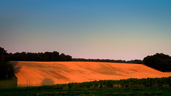 HDR field at dawn (grahamrobb888) Tags: summer france field sunrise dawn nikon wheat earlymorning solstice donis d5100