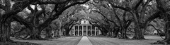 Oak Alley (Darren Berg) Tags: trees blackandwhite house plantation antebellum wideaspect