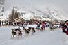 C'est parti (maxguitare1) Tags: montagne mountain montagna montaña neige nieve neve snow course gara raza race france alpes vanoise bessans traîneaux sleds slitte trineos