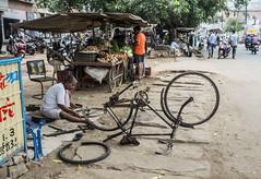 El doctor de bicicletas (Nebelkuss) Tags: india gwalior bicicleta bicycle mecanico mechanic street callejeras ruedas wheels elzoohumano thehumanzoo quierosercomostevemccurry iwannabelikestevemccurry fujixpro1 fujinonxf23f14