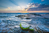 I am a rock, I am an island... (WT Journal) Tags: australia nsw sydney turimetta beach sunrise
