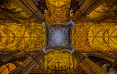 Ceiling of Cathedral of Seville (beune casta) Tags: cathedral ceiling church roof seville sevilla sevilha espagne españa spain symmetric symmetries symmetry beune beunephotography